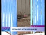 В Мурманске прямо посреди детской площадки установили туалет (эфир от 08.05.14)